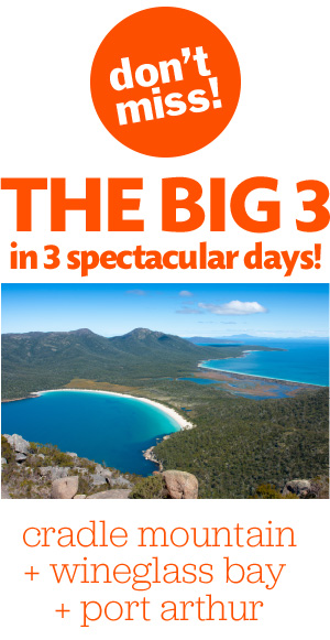 Don't miss the BIG 3 in 3 spectacular days. Cradle Mountain, Wineglass and Port Arthur